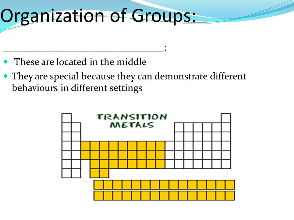 Organization of Groups: ____________________________ : These are located in the middle They are special because they can demonstrate different behaviours in different settings