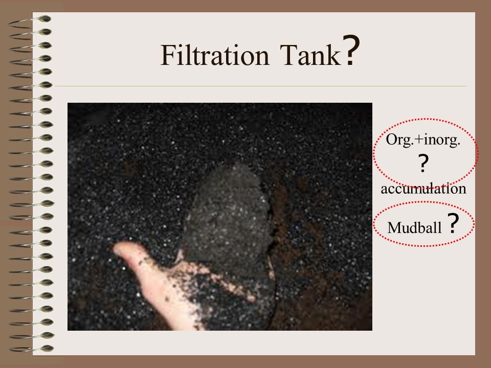 Filtration Tank ? Org.+inorg. ? accumulation Mudball ?