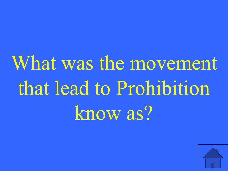 What was the movement that lead to Prohibition know as