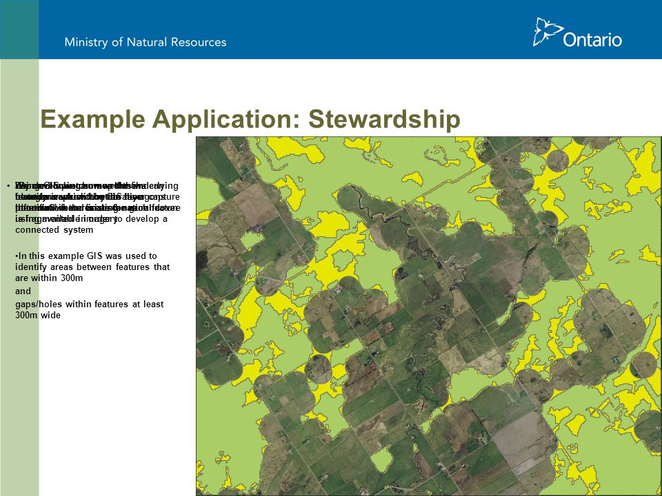 21 Zoomed in we can see the 5ha hexagons which contain the information and areas for each feature Using GIS we can map the underlying features captured by the hexagons identified in the final scenario We can look at how well the boundaries from the GIS layer capture the actual features on the ground using available imagery By developing some rules we can identify areas with restoration potential where existing natural cover is fragmented in order to develop a connected system In this example GIS was used to identify areas between features that are within 300m and gaps/holes within features at least 300m wide Example Application: Stewardship
