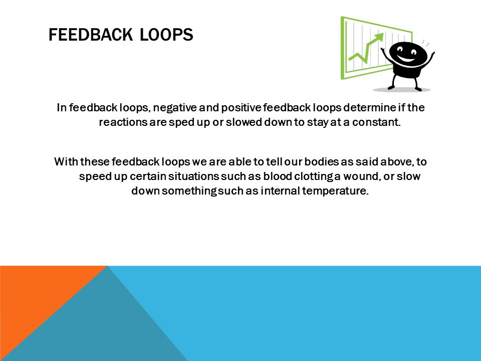 FEEDBACK LOOPS In feedback loops, negative and positive feedback loops determine if the reactions are sped up or slowed down to stay at a constant.