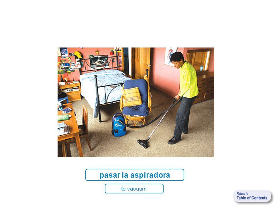 pasar la aspiradora to vacuum