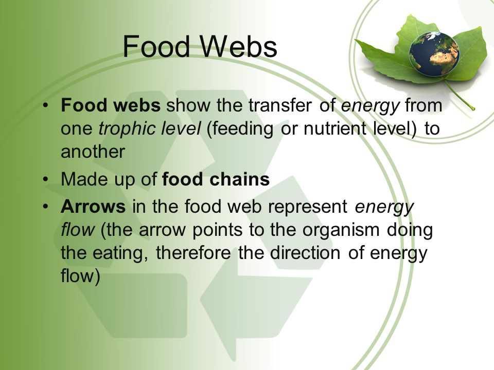 Food Webs Food webs show the transfer of energy from one trophic level (feeding or nutrient level) to another Made up of food chains Arrows in the foo