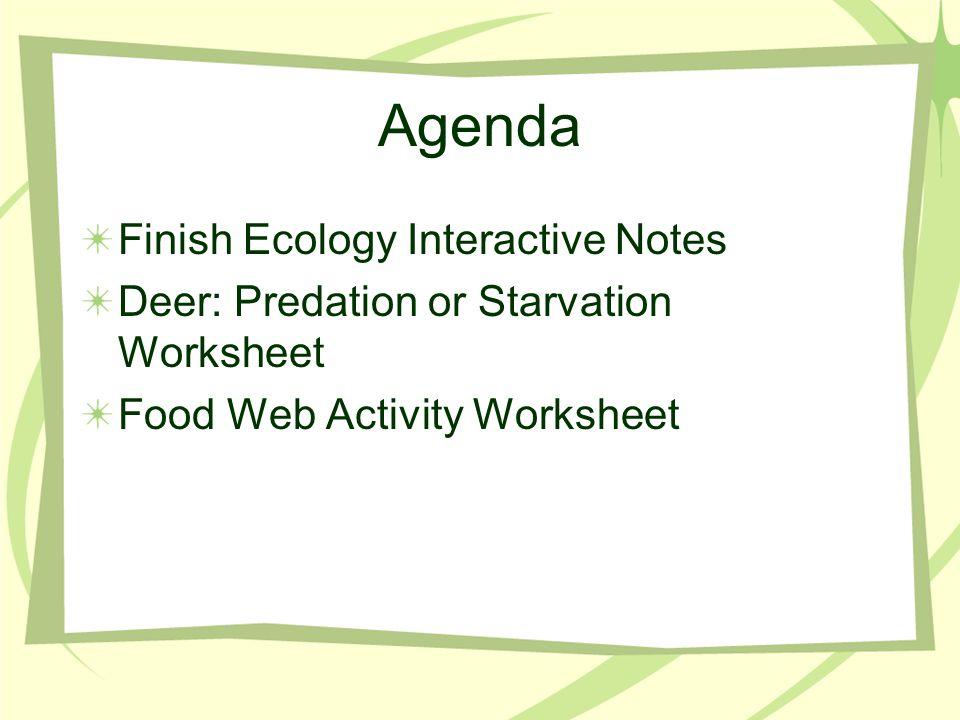 Agenda Finish Ecology Interactive Notes Deer: Predation or Starvation Worksheet Food Web Activity Worksheet