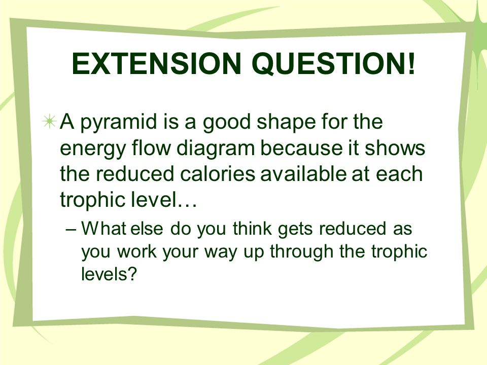 EXTENSION QUESTION! A pyramid is a good shape for the energy flow diagram because it shows the reduced calories available at each trophic level… –What