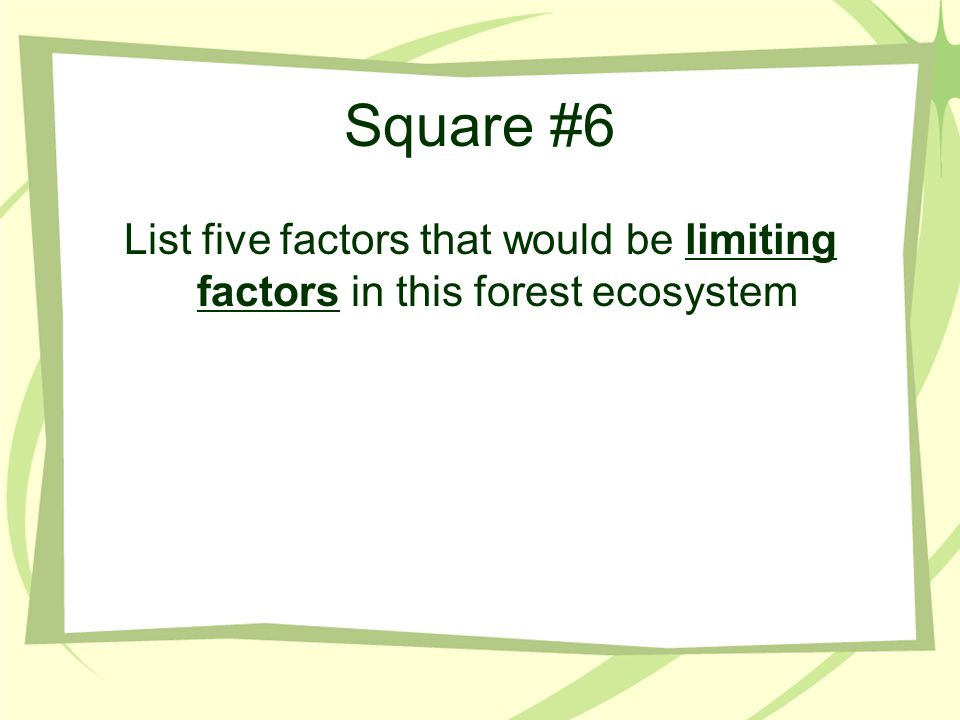 Square #6 List five factors that would be limiting factors in this forest ecosystem