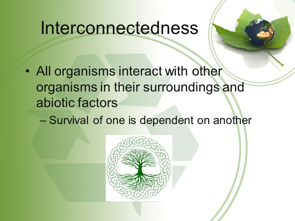 Interconnectedness All organisms interact with other organisms in their surroundings and abiotic factors –Survival of one is dependent on another