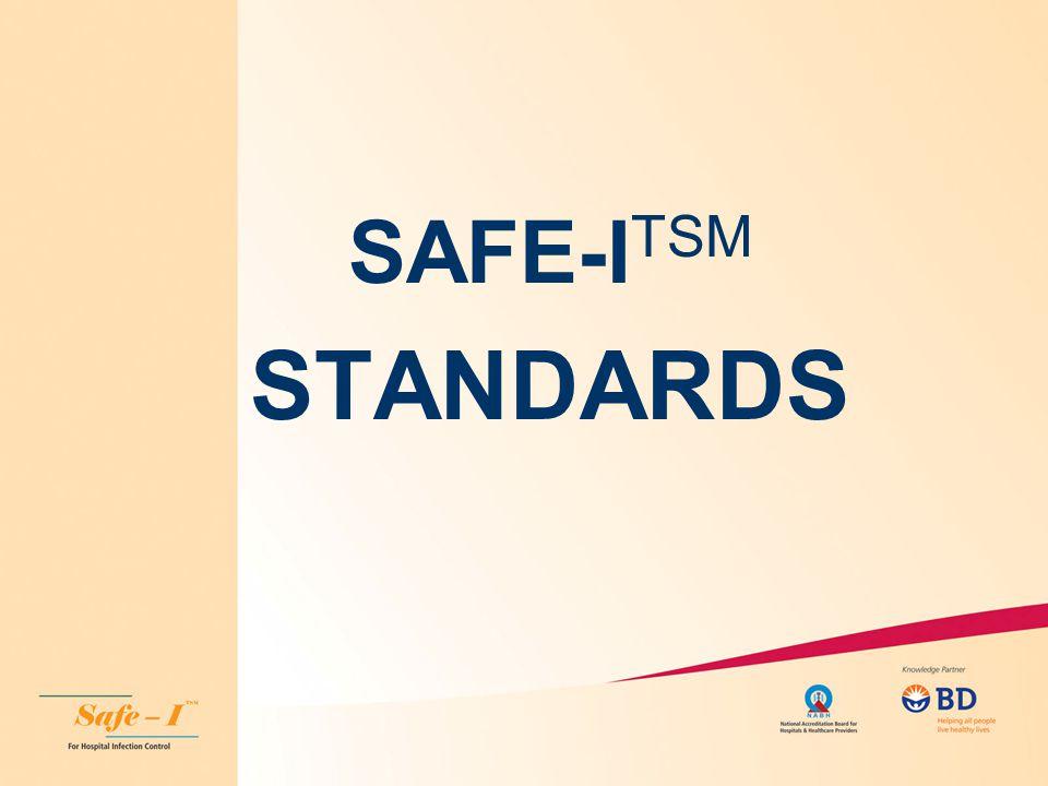 SAFE-I TSM STANDARDS