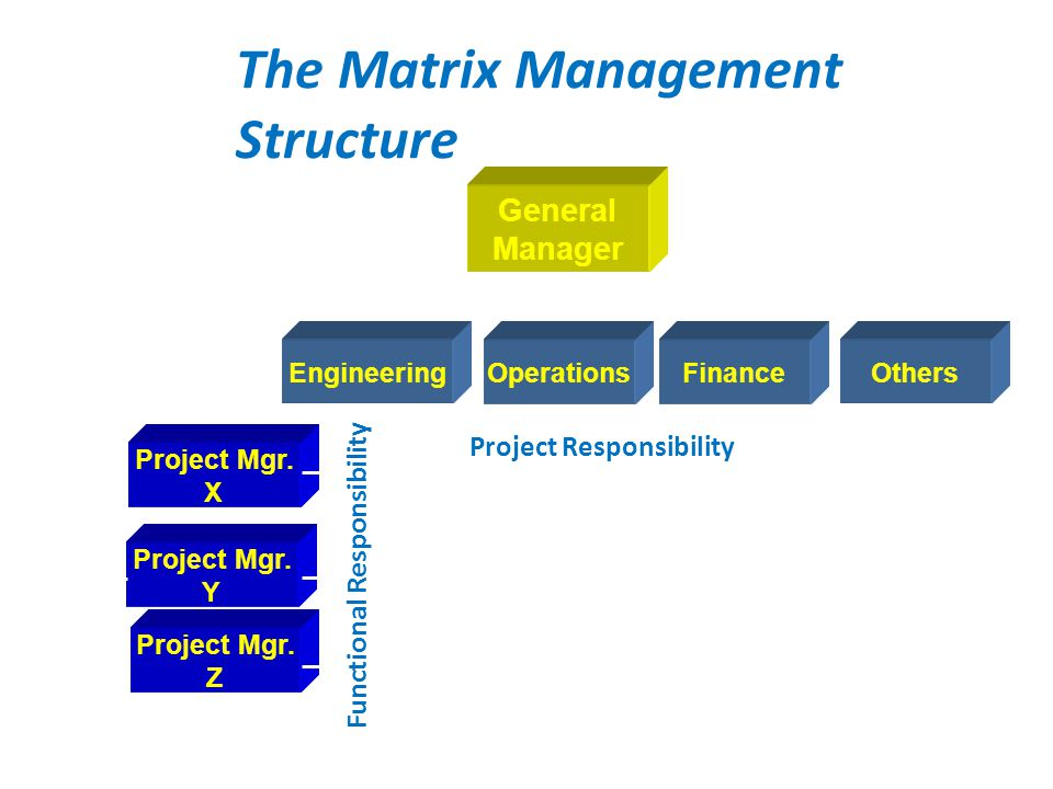The Matrix Management Structure EngineeringOperationsFinanceOthers Project Mgr. X Project Mgr. Y Project Mgr. Z General Manager Project Responsibility