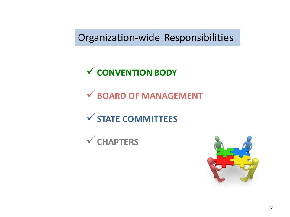 Organization-wide Responsibilities CONVENTION BODY BOARD OF MANAGEMENT STATE COMMITTEES CHAPTERS 9