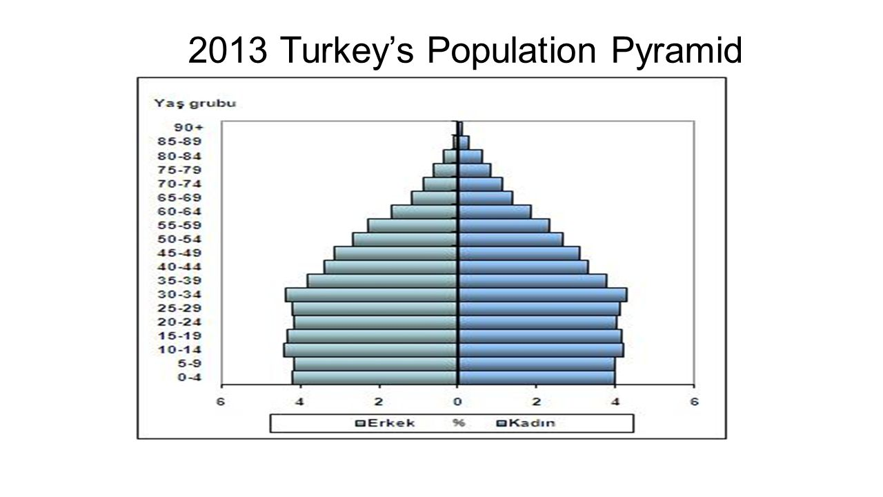 2013 Turkey's Population Pyramid