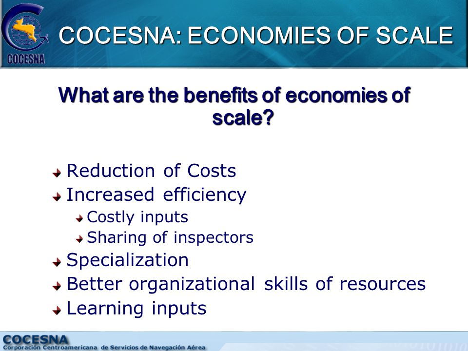 COCESNA: ECONOMIES OF SCALE What are the benefits of economies of scale.