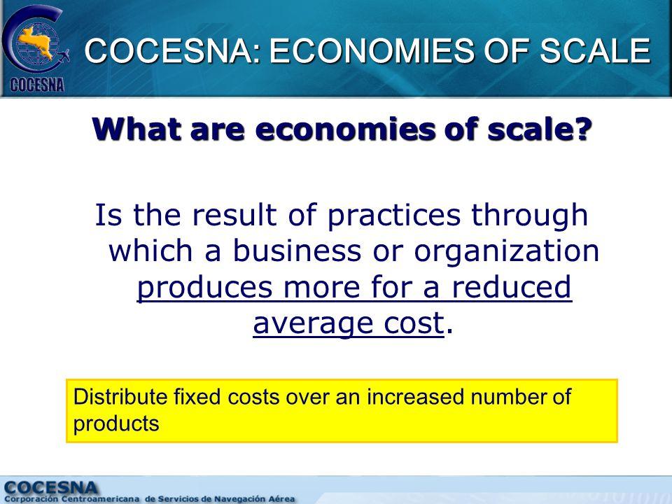 COCESNA: ECONOMIES OF SCALE What are economies of scale.