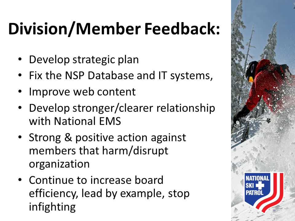 Division/Member Feedback: Develop strategic plan Fix the NSP Database and IT systems, Improve web content Develop stronger/clearer relationship with N