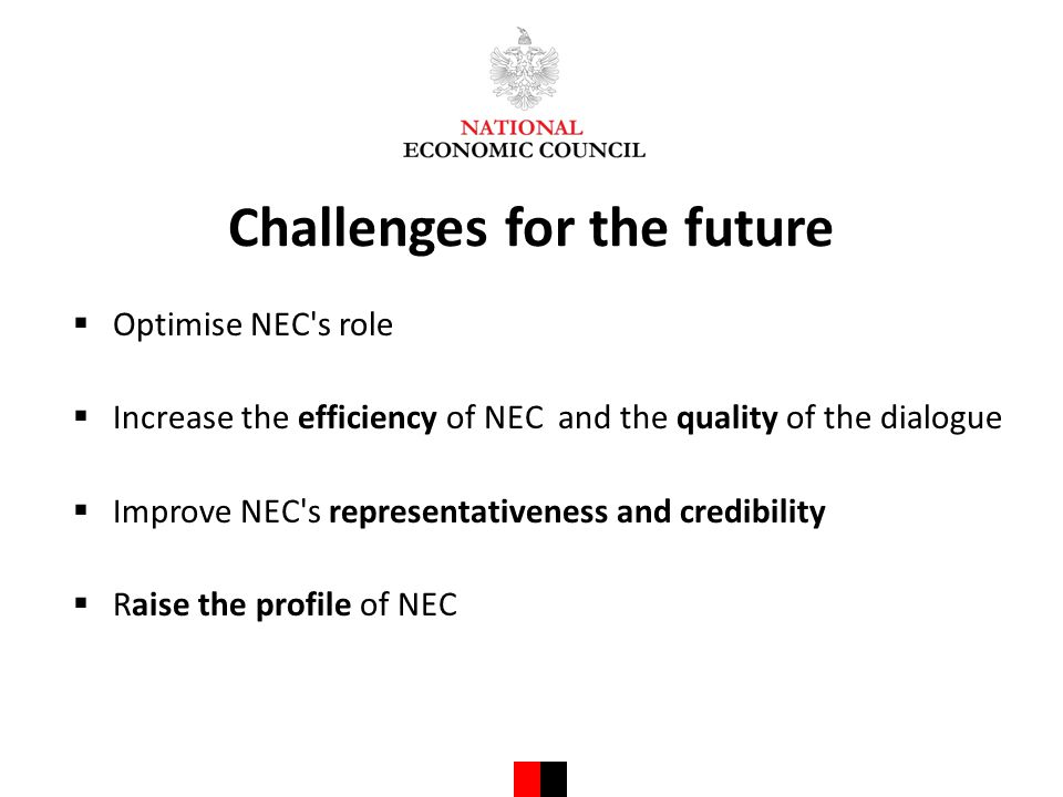 Challenges for the future  Optimise NEC s role  Increase the efficiency of NEC and the quality of the dialogue  Improve NEC s representativeness and credibility  Raise the profile of NEC
