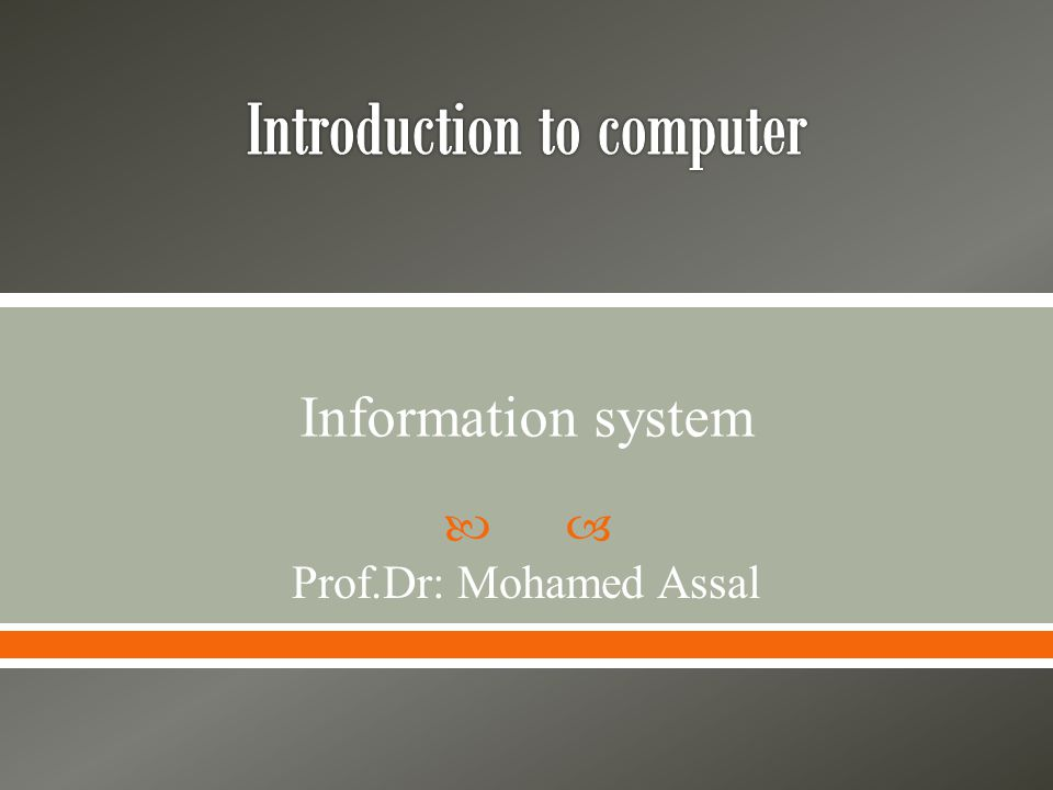  Prof.Dr: Mohamed Assal Information system
