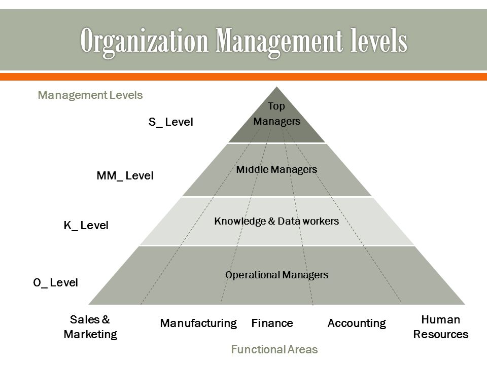 Top Managers Middle Managers Knowledge & Data workers Operational Managers Management Levels S_ Level MM_ Level K_ Level O_ Level Sales & Marketing Human Resources AccountingFinanceManufacturing Functional Areas