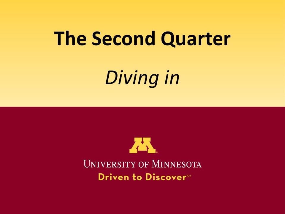 The Second Quarter Diving in