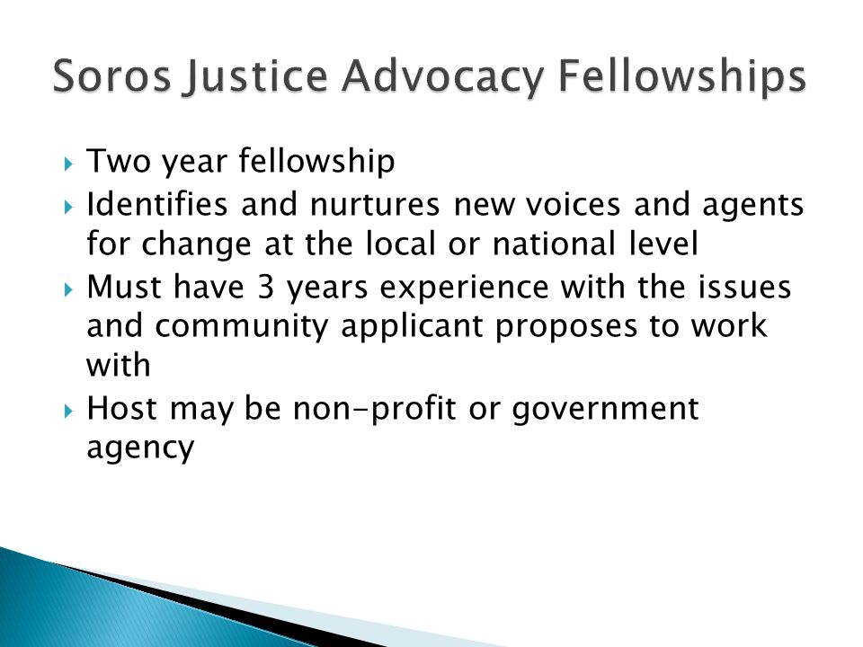 Identifies and nurtures new voices and agents for change at the local or national level  Must have 3 years experience with the issues and community applicant proposes to work with  Host may be non-profit or government agency