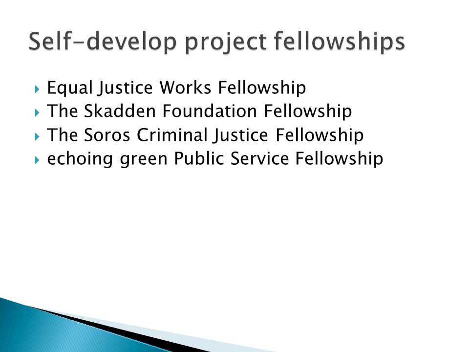 Equal Justice Works Fellowship  The Skadden Foundation Fellowship  The Soros Criminal Justice Fellowship  echoing green Public Service Fellowship