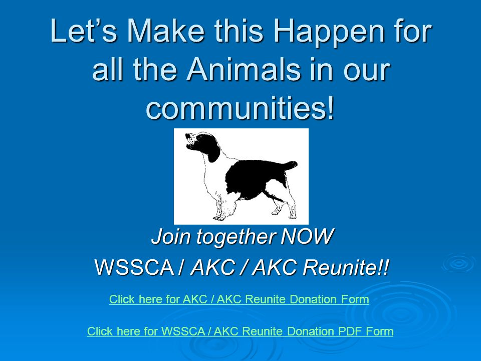 Let's Make this Happen for all the Animals in our communities! Join together NOW WSSCA / AKC / AKC Reunite!! Click here for WSSCA / AKC Reunite Donati