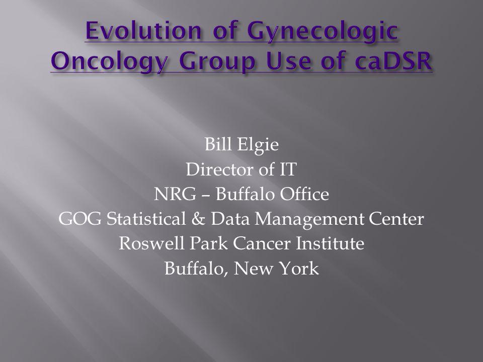 Bill Elgie Director of IT NRG – Buffalo Office GOG Statistical & Data Management Center Roswell Park Cancer Institute Buffalo, New York