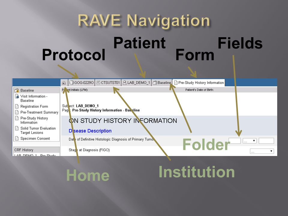 Home Protocol Institution Patient Folder Form Fields