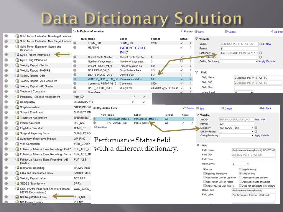 Performance Status field with a different dictionary.