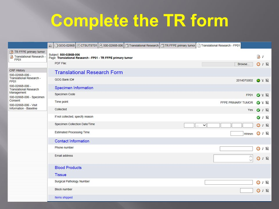 Complete the TR form