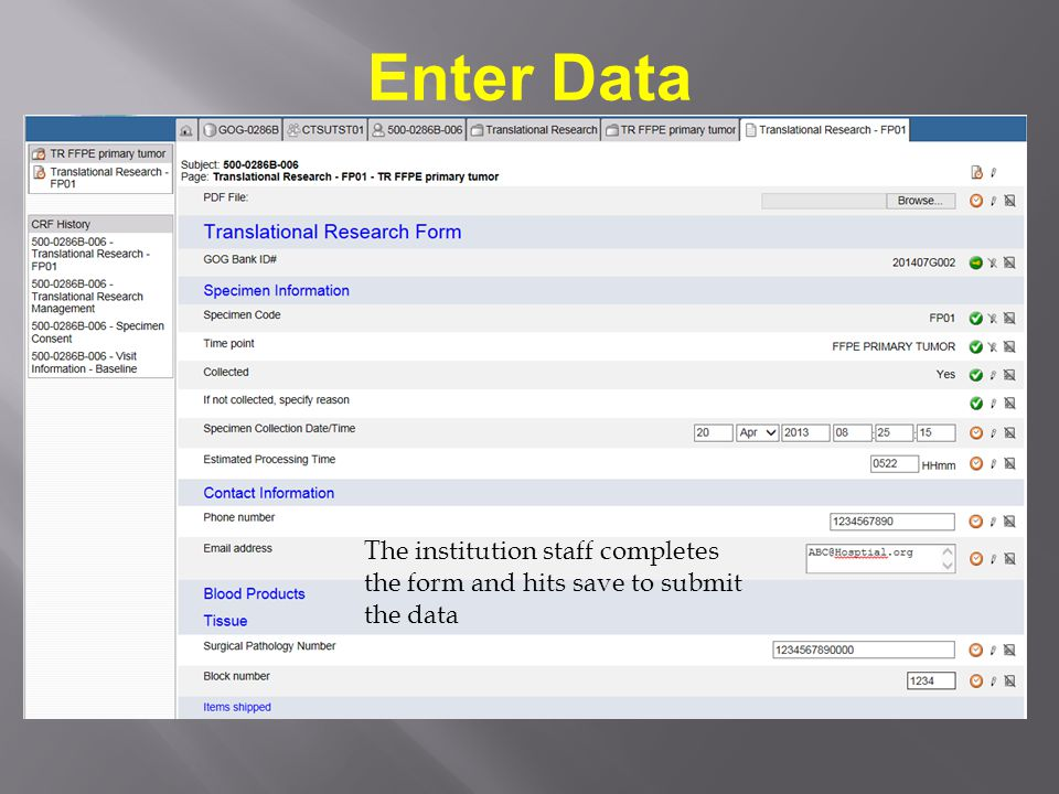 Enter Data The institution staff completes the form and hits save to submit the data