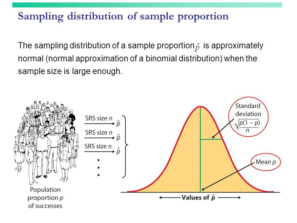Sampling distribution of sample proportion The sampling distribution of a sample proportion is approximately normal (normal approximation of a binomia