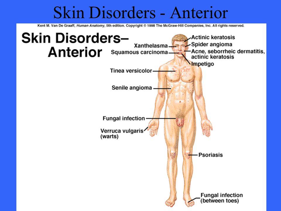 Skin Disorders - Anterior