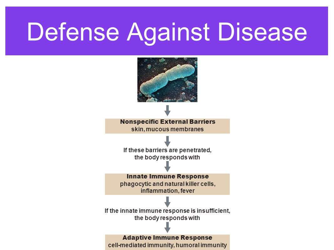 First line of defense Non-specific defenses are designed to prevent infections by viruses and bacteria.