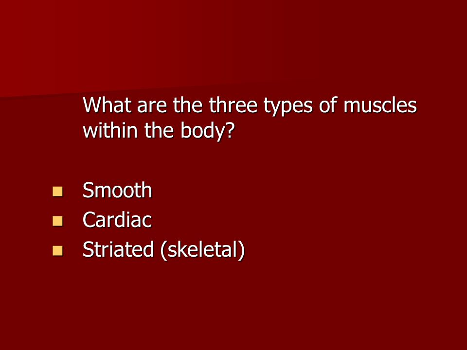 What are the three types of muscles within the body.
