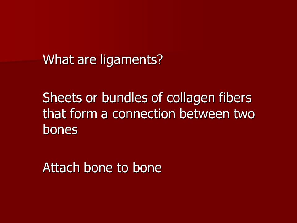 What are ligaments.