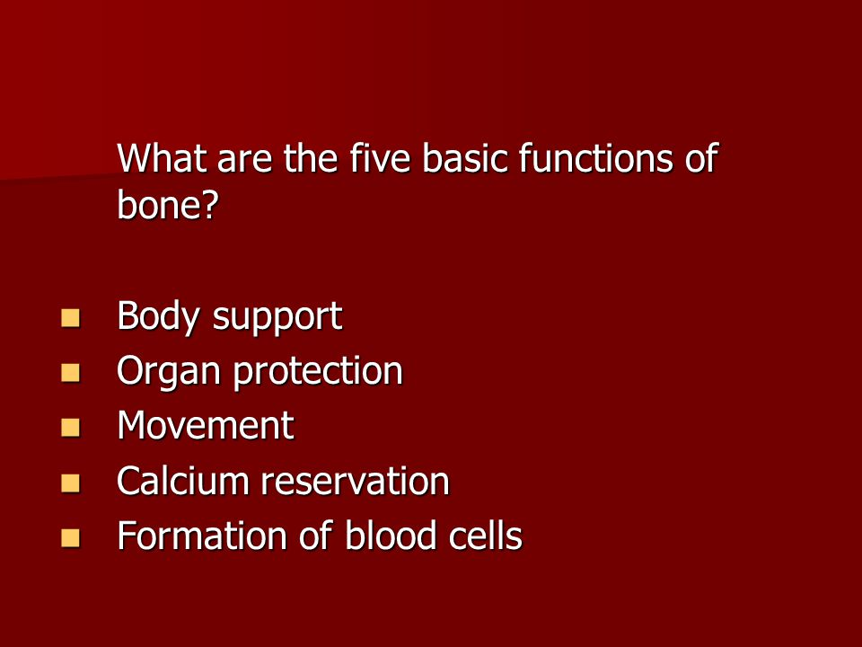 What are the five basic functions of bone.