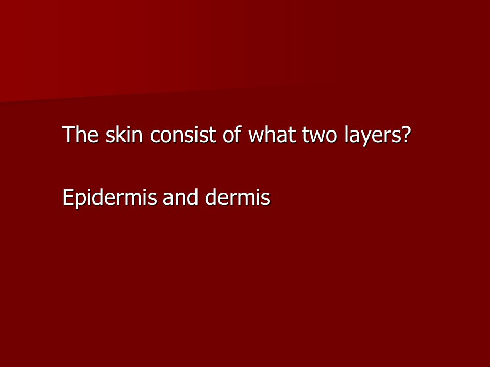 The skin consist of what two layers? Epidermis and dermis