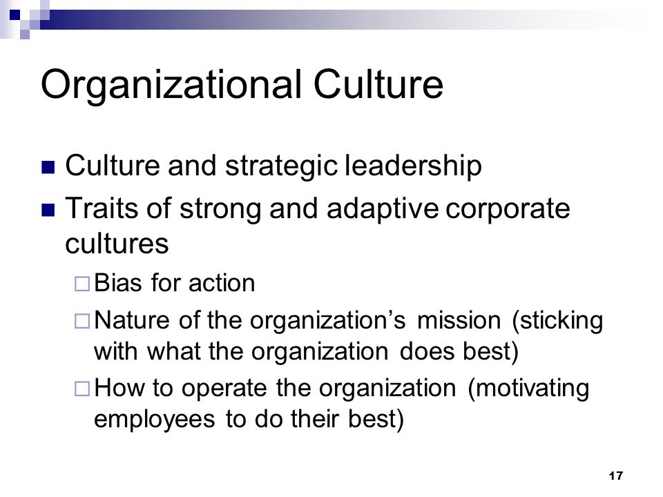 17 Organizational Culture Culture and strategic leadership Traits of strong and adaptive corporate cultures  Bias for action  Nature of the organiza