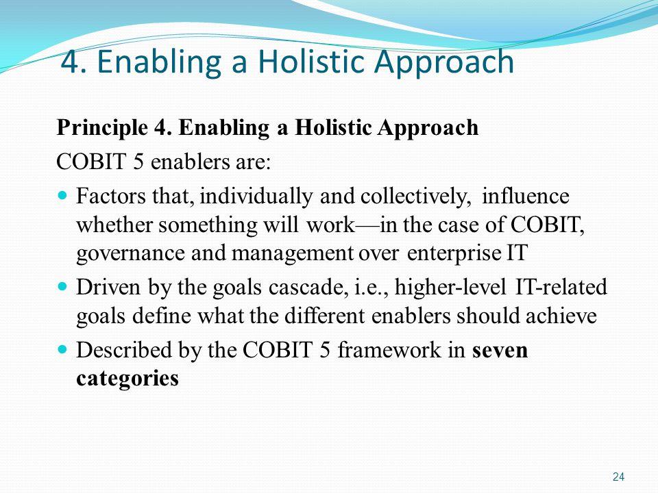 4.Enabling a Holistic Approach Principle 4.