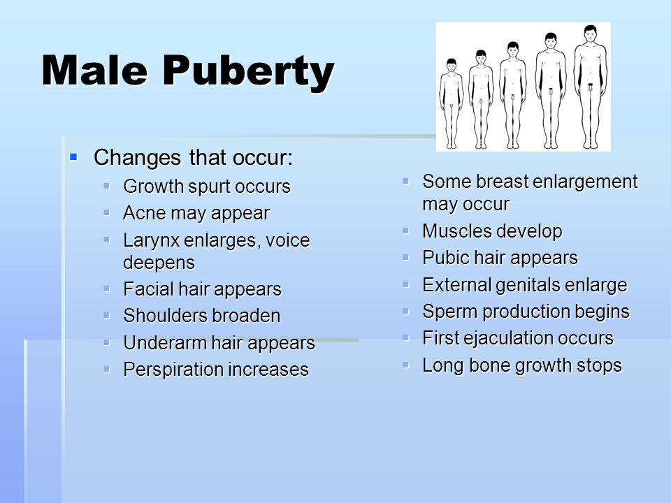 Male Puberty  Changes that occur:  Growth spurt occurs  Acne may appear  Larynx enlarges, voice deepens  Facial hair appears  Shoulders broaden