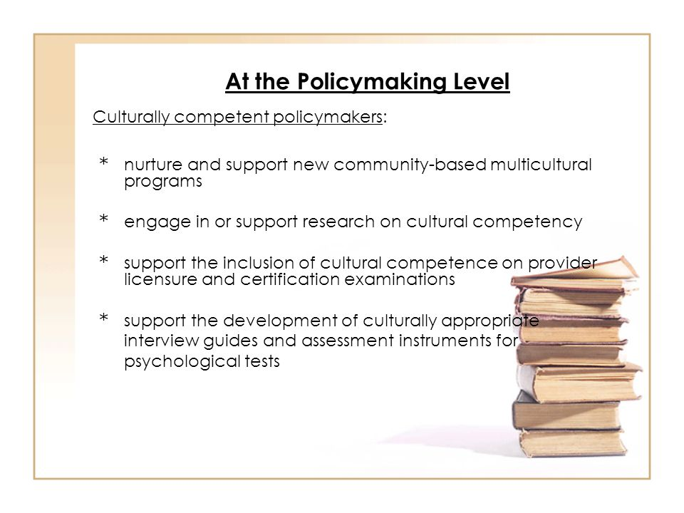 At the Policymaking Level * nurture and support new community-based multicultural programs * engage in or support research on cultural competency * su