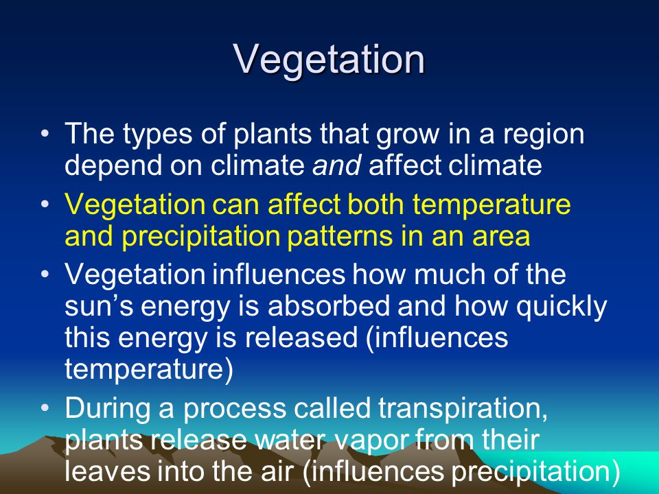 Vegetation The types of plants that grow in a region depend on climate and affect climate Vegetation can affect both temperature and precipitation patterns in an area Vegetation influences how much of the sun's energy is absorbed and how quickly this energy is released (influences temperature) During a process called transpiration, plants release water vapor from their leaves into the air (influences precipitation)
