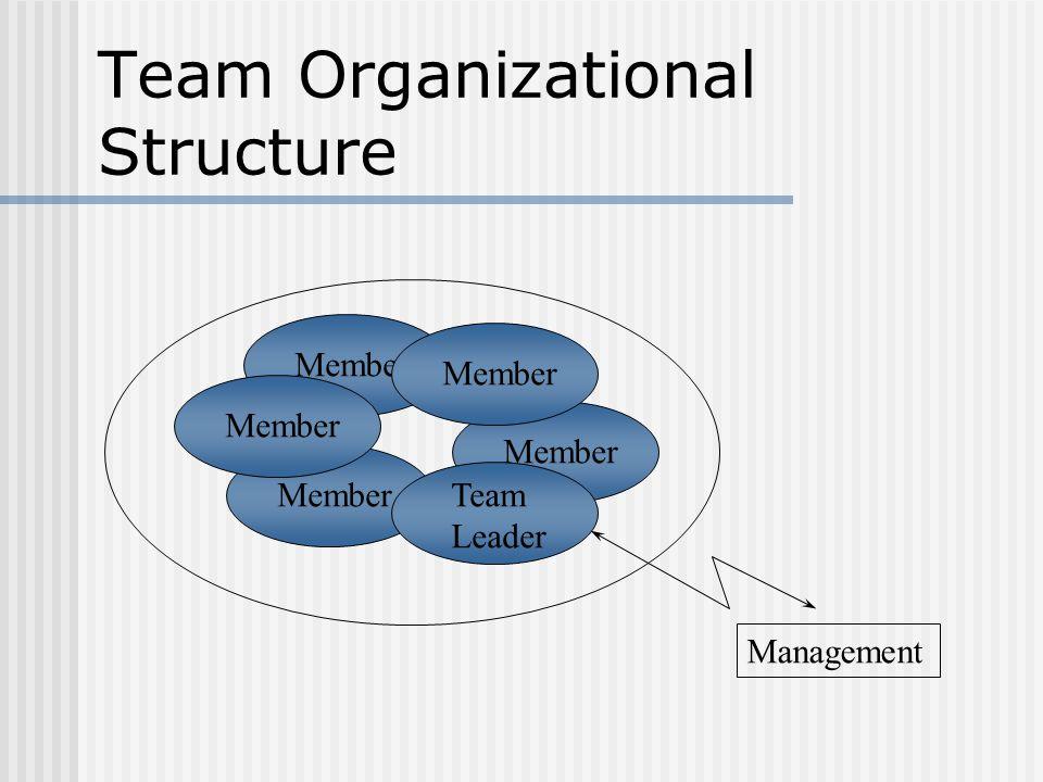 Member Team Organizational Structure Member Team Leader Management