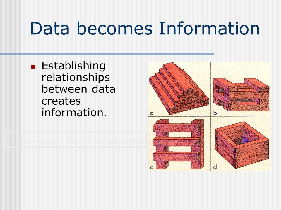 Data becomes Information n Establishing relationships between data creates information.
