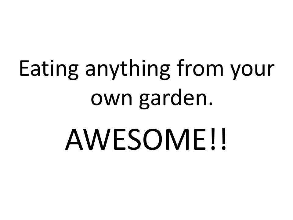 Eating anything from your own garden. AWESOME!!