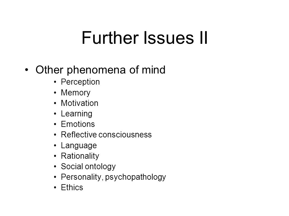 Further Issues II Other phenomena of mind Perception Memory Motivation Learning Emotions Reflective consciousness Language Rationality Social ontology Personality, psychopathology Ethics
