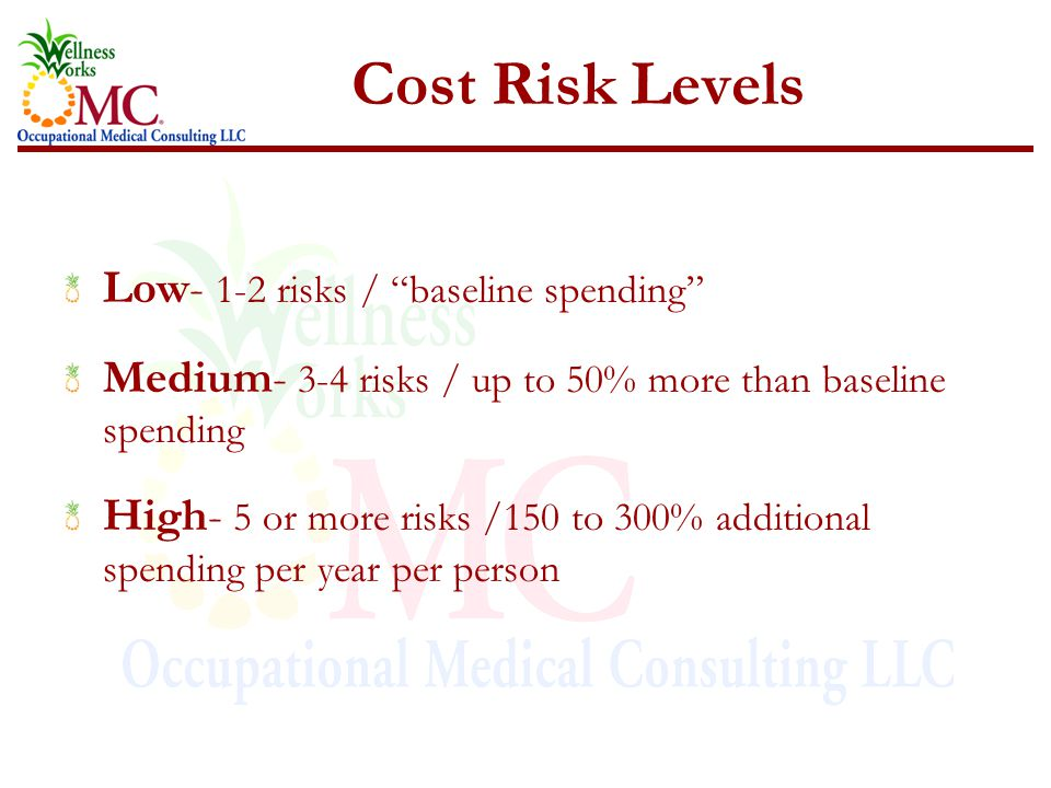 "Cost Risk Levels Low- 1-2 risks / ""baseline spending"" Medium- 3-4 risks / up to 50% more than baseline spending High- 5 or more risks /150 to 300% add"