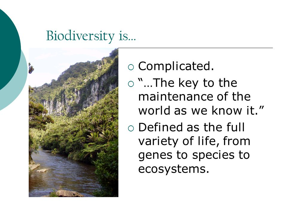 Biodiversity is…  Complicated.