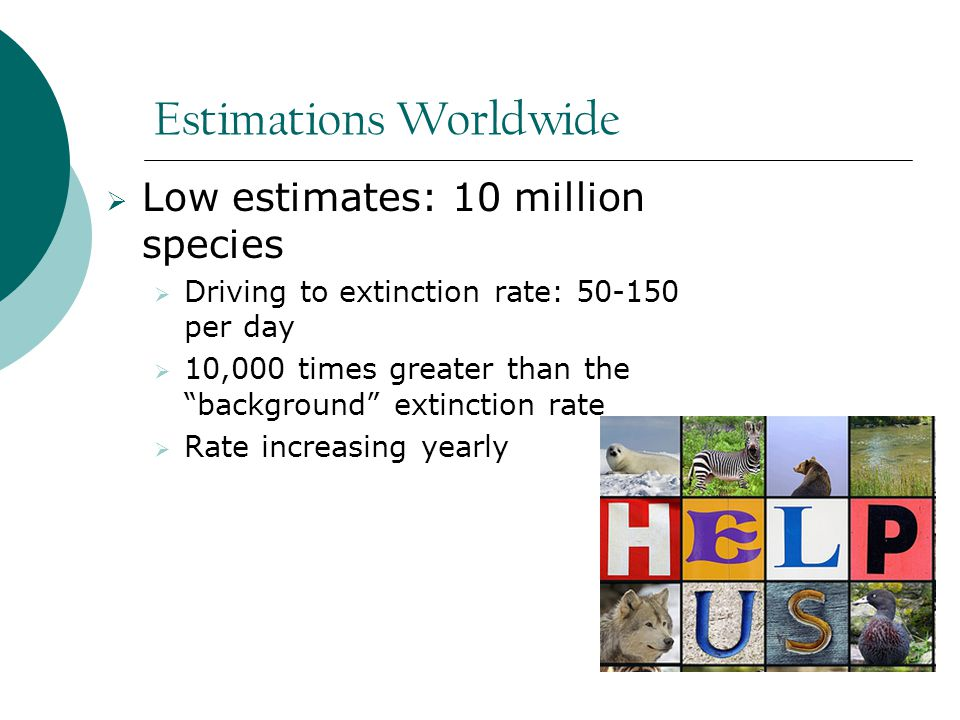 Estimations Worldwide  Low estimates: 10 million species  Driving to extinction rate: 50-150 per day  10,000 times greater than the background extinction rate  Rate increasing yearly