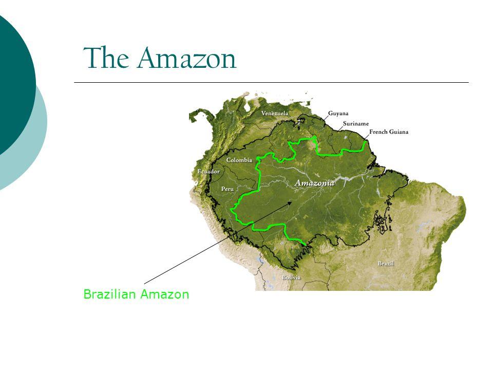 Splendid Isolation. Two roads N. to state of Roraima and Venezuela S.